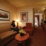 Hotel Hilton Garden Inn Las Vegas-Henderson