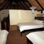 Hotel Bushfront Lodge