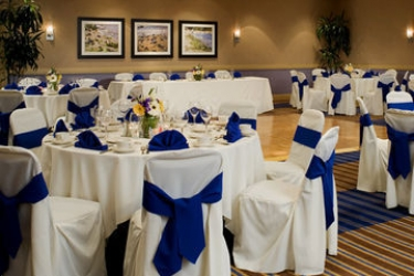 Hotel Four Points By Sheraton Los Angeles Westside: Ballroom LOS ANGELES (CA)