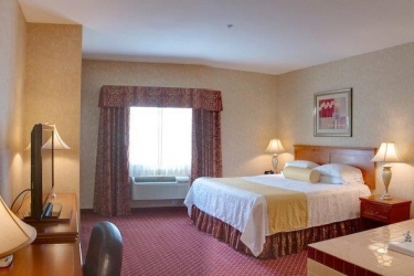 Hotel Best Western Plus Media Center Inn & Suites: Habitaciòn LOS ANGELES (CA)