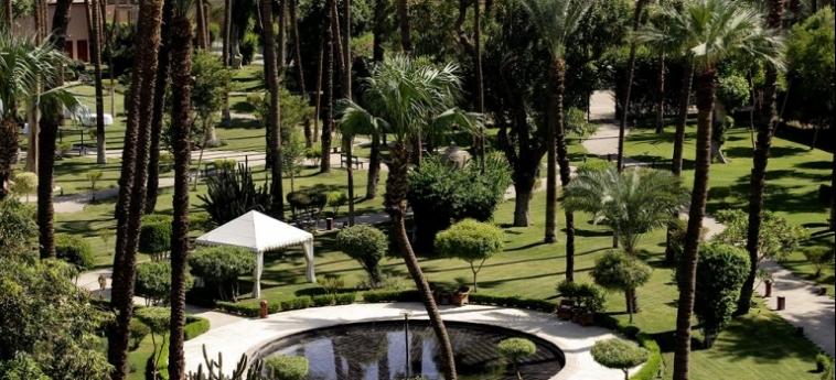 Hotel Pavillon Winter Luxor: Roof Garden LUXOR