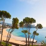 Hotel Melia Calvia Beach