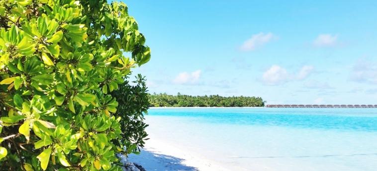 Dhiffushi White Sand Beach Hotel: Cocina MALDIVAS