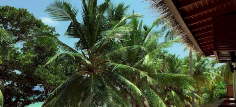 Hotel Aveyla Manta Village: Chalet MALDIVE