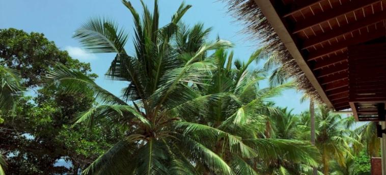 Hotel Aveyla Manta Village: Dettagli Strutturali MALDIVE