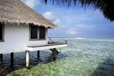Hotel Gangehi Island Resort: Innenschwimmbad MALDIVEN