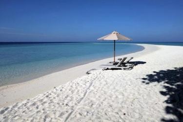 Hotel Gangehi Island Resort: Strand Blick/Meer Blick MALDIVEN