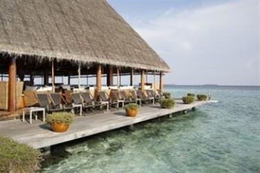 Hotel Gangehi Island Resort: Whirlpool MALDIVEN