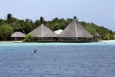 Hotel Gangehi Island Resort: Zimmer- Detail MALDIVEN