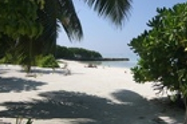 Hotel Mathiveri Inn: Villa detail MALDIVES