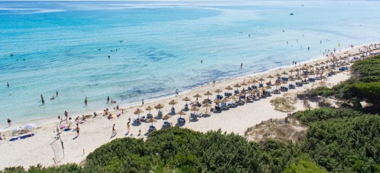 Hotel Zafiro Bahia: Playa MALLORCA - ISLAS BALEARES