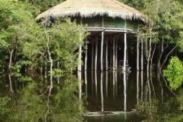 Hotel Juma Lodge: Restaurante MANAUS