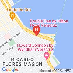 Mappa DOUBLETREE BY HILTON VERACRUZ