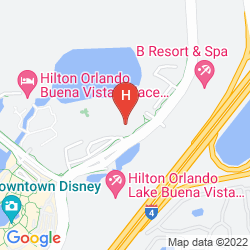 Mappa WYNDHAM LAKE BUENA VISTA DISNEY SPRINGS RESORT AREA