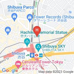 Mappa SHIBUYA TOKYU REI
