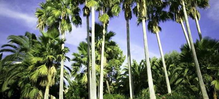 Hotel Don Carlos Leisure Resort & Spa: Exterieur MARBELLA - COSTA DEL SOL