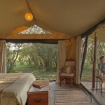 ENCOUNTER MARA CAMP 4 Stars