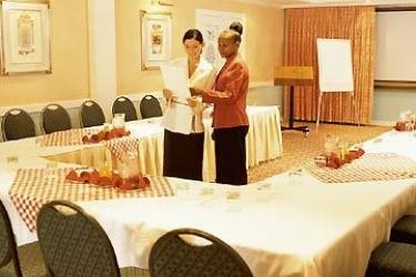 Hotel Ezulwini Sun: Conference Room MBABANE