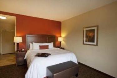 Hotel Hampton Inn & Suites Mcallen: Bedroom MCALLEN (TX)