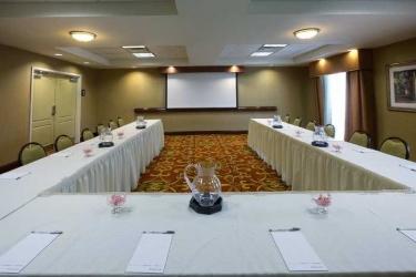 Hotel Hampton Inn & Suites Mcallen: Conference Room MCALLEN (TX)