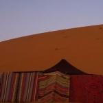CAMEL SAFARI CAMP 2 Etoiles