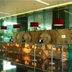 Hotel Holiday Inn Mexico City Plaza Universida