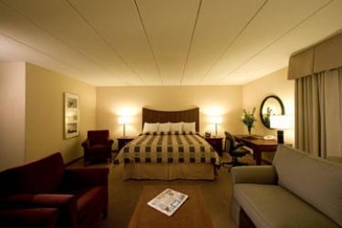 Hotel Holiday Inn Airport: Habitacion Suite MINNEAPOLIS (MN)