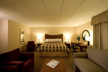 Hotel Holiday Inn Airport: Suite Room MINNEAPOLIS (MN)