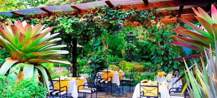 Hotel Monteverde Lodge & Gardens: Ristorante MONTEVERDE - PUNTARENAS