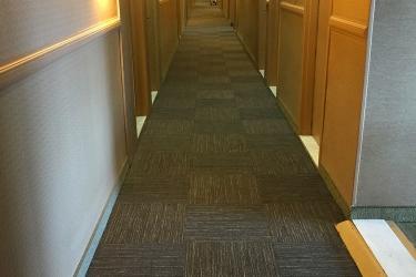 Hotel Quality Inn & Suites P.e. Trudeau Airport: Pasillo MONTREAL