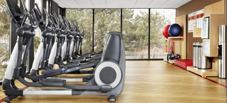 Hotel Le Centre Sheraton Montreal: Gym MONTREAL