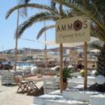 Hotel Mykonos Ammos