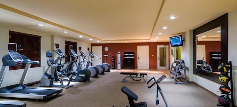 Hotel Hilton Garden Inn Queens/jfk Airport: Fitnesscenter NEW YORK (NY)