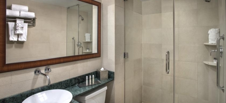 Doubletree By Hilton Hotel New York - Times Square South: Bagno NEW YORK (NY)
