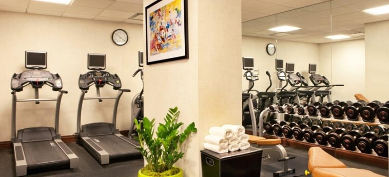 Doubletree By Hilton Hotel New York - Times Square South: Palestra NEW YORK (NY)
