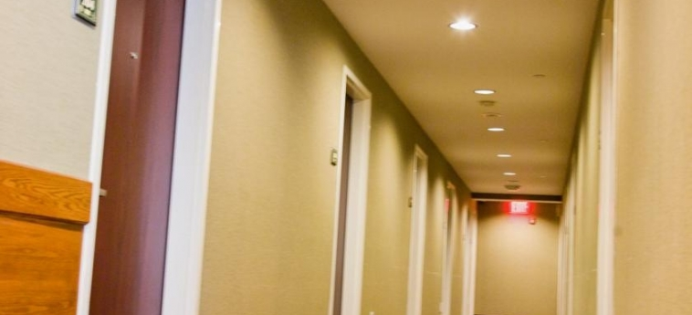 Hotel Best Western Bowery Hanbee: Couloir NEW YORK (NY)