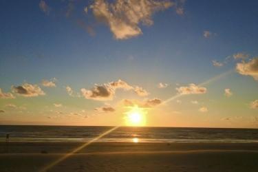 The Flying Pig Beach Hostel: Vista spiaggia/oceano NOORDWIJK AAN ZEE