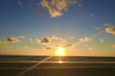 The Flying Pig Beach Hostel: Beach/Ocean View NOORDWIJK AAN ZEE
