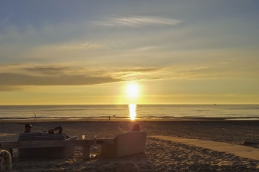 The Flying Pig Beach Hostel: Beach NOORDWIJK AAN ZEE