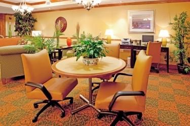 Hotel Holiday Inn Express & Suites Charleston-North: Lobby NORTH CHARLESTON (SC)