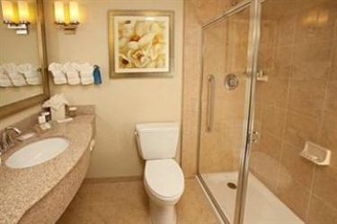 Hotel Hilton Garden Inn Lake Buena Vista/orlando: Trullo ORLANDO (FL)