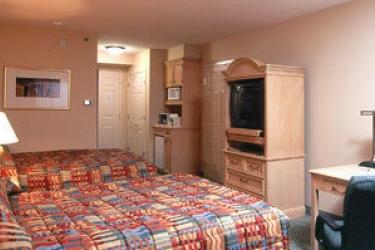Hotel Hilton Garden Inn Orlando At Seaworld: Room - Guest ORLANDO (FL)