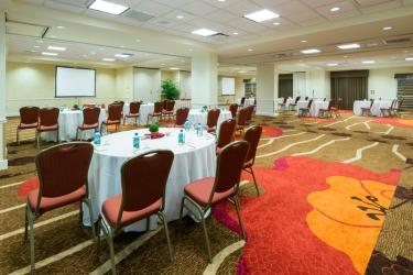 Hotel Hilton Garden Inn Orlando At Seaworld: Sala de conferencias ORLANDO (FL)