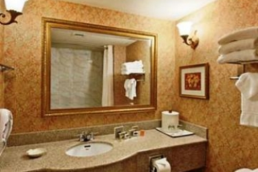 Hotel Wingate By Wyndham @ Orlando International Airport: Badezimmer ORLANDO (FL)