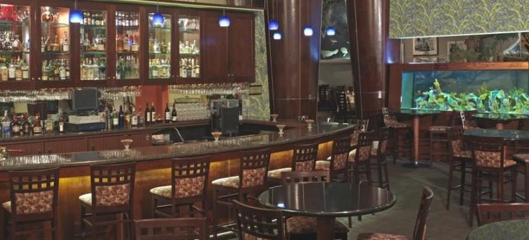 Hotel Rosen Centre: Bar ORLANDO (FL)