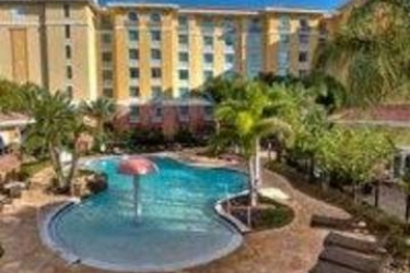 Hotel Homewood Suites By Hilton Lake Buena Vista - Orlando: Außenschwimmbad ORLANDO (FL)