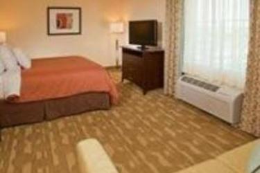 Hotel Homewood Suites By Hilton Lake Buena Vista - Orlando: Schlafzimmer ORLANDO (FL)