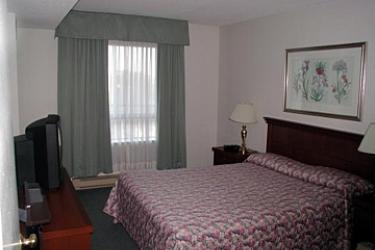 Les Suites Hotel Ottawa: Guest Room OTTAWA