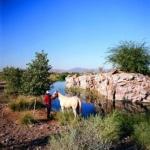 SHERATON WILD HORSE PASS 5 Estrellas