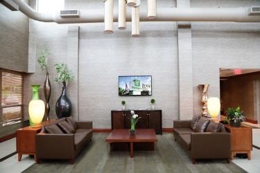 Hotel Holiday Inn Plainview-Long Island: Lobby Lounge PLAINVIEW (NY)